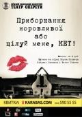 «Целуй меня, Кэт!» в театре «Оперетта»