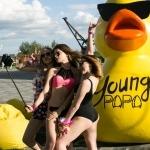 Young Free PAPA Bar