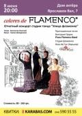 Colores de FLAMENCO «Цвета фламенко» в «Дом Актера»