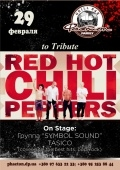 Концерт «Red Hot Chili Peppers to Tribute»