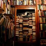 Книжный магазинчик «Гоблинъ»