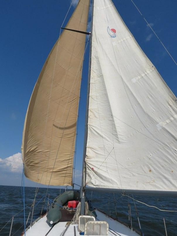 Прогулки на парусной яхте по Днепру